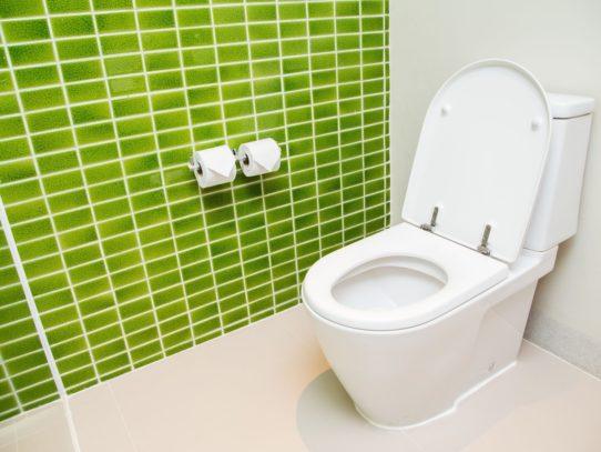 Чем мыть унитаз правильно? — Не царское, но необходимое дело!