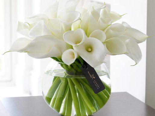 Как правильно сохранить цветы в вазе — Лайфхаки