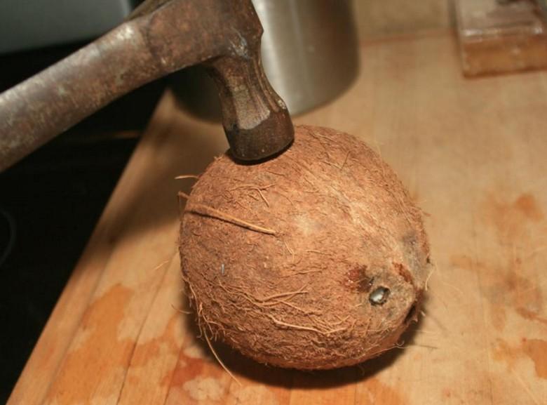 kak-pochistit-kokos_ (6)