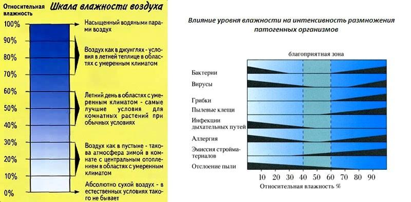 kak-uvlazhnit-vozduh-v-kvartire-bez-uvlazhnitelya_ (5)